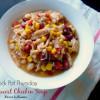 Crock Pot Southwest Chicken Soup