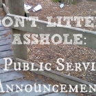 Don't Litter, Asshole: A Public Service Announcement