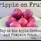 Trippin' on Fruit: Apple Orchards and Pumpkin Patches