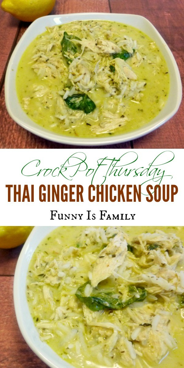 This Thai Ginger Chicken Soup recipe is just a little bit spicy, and has great flavor! This slow cooker chicken soup made a great dinner!